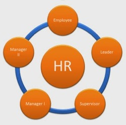 Employwise Hr Software Hrm Software Blog